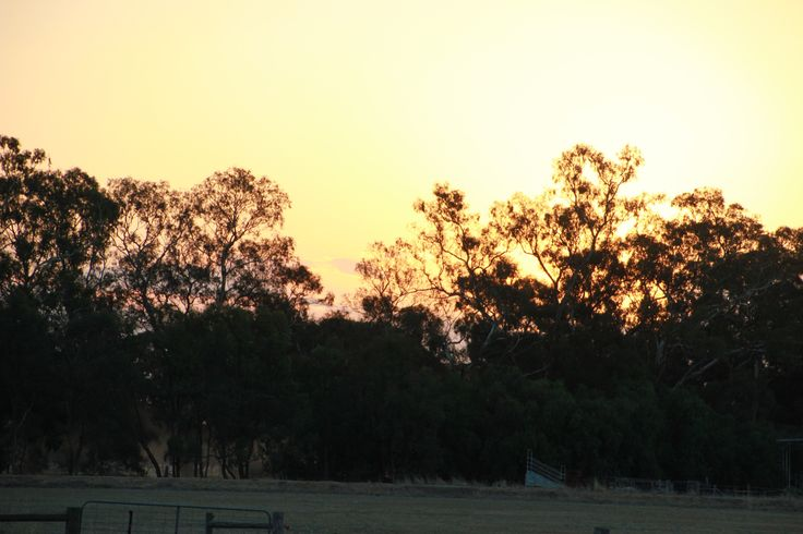 Sunset 5th Feb 2015
