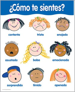 ¿Como te sientes? Spanish Basic Skills Chart by CTP. This chart includes 4 reproducibles on the back to reinforce learning! Great for ESL!