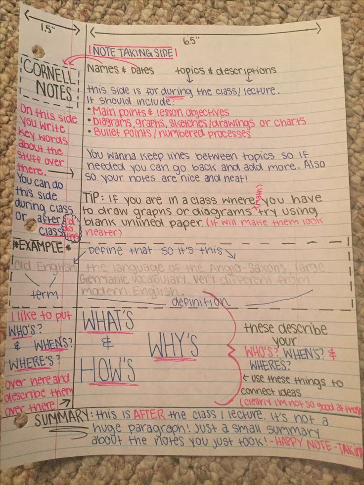 The best way to organize your Cornell notes!!
