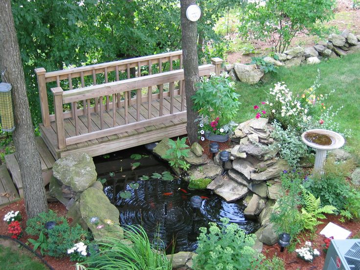 about Koi pond on Pinterest  Backyard ponds, Waterfalls and Feng shui