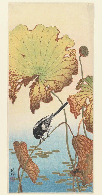 Ohara Koson (Shoson) (Japanese, 1877-1945). Wagtail and Lotus, ca. 1915. Woodblock print, 14 13/16 x 6 7/16 in. (37.7 x 16.4 cm). Brooklyn Museum
