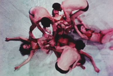 Carolee Schneemann, Meat Joy