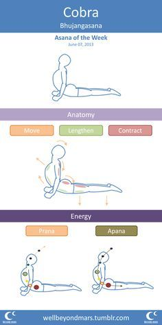 Search Search Asana    Yogi Google    mother necklace week asana heart daughter Search and   the Flow   for Google split of and