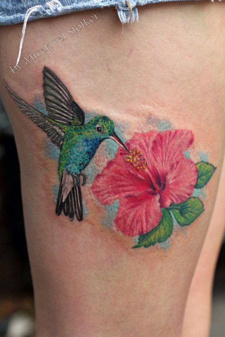 hummingbird with hibiscus flower tattoo by Stotker