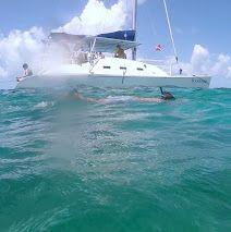 Snorkel Key West coral reef. #snorkel #snorkelspots #sail #key #west #snorkeling #FloridaKeys