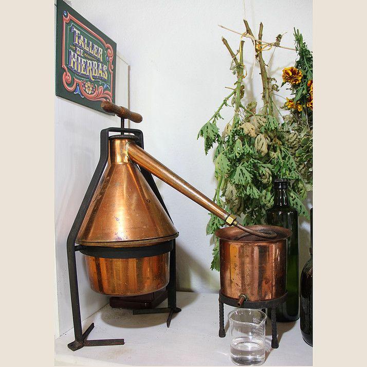 Taller de Hierbas // Alambique // Still #Herbalism #NatualMedicine #MedicinaNatural #TallerDeHierbas #HerbalMedicine
