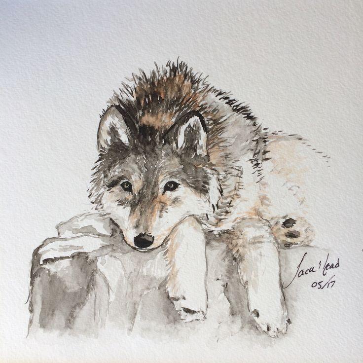 Wolf. ~ Sara Noad
