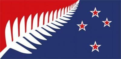 La fougere de lequipe de rugby ornera t elle le drapeau 1
