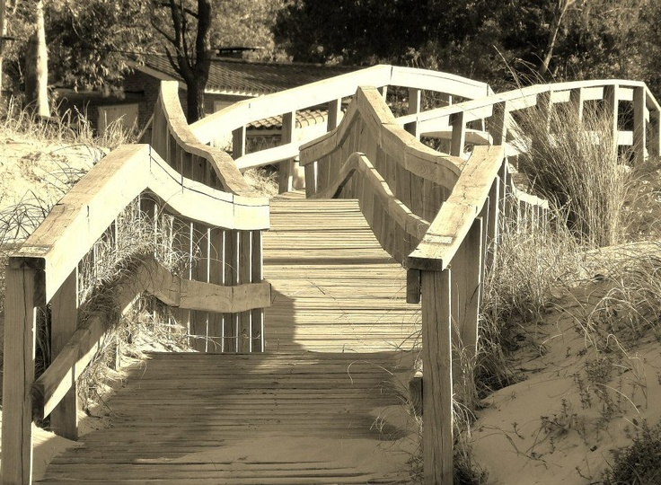 puentes..
