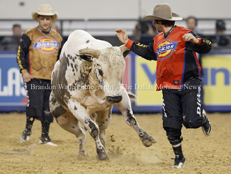 I love the bull fighters! Bullriding at Cowboys Stadium — Brandon Wade Photography