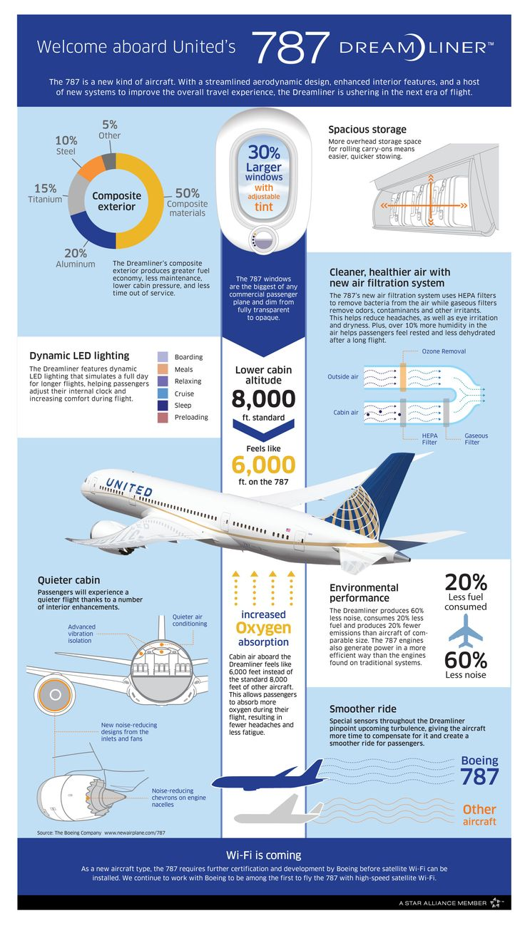 Boeing 787 interior coach viewing gallery - Boeing 787 Infographic