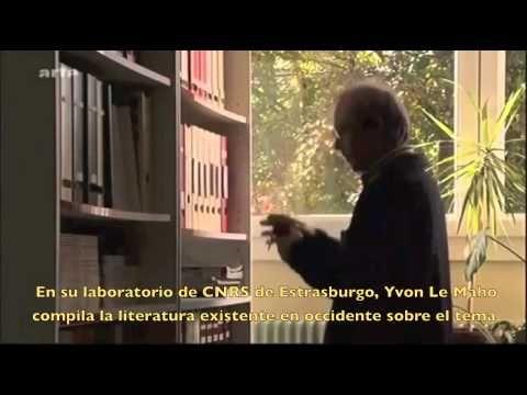 ▶ Beneficios del ayuno (documental) - YouTube