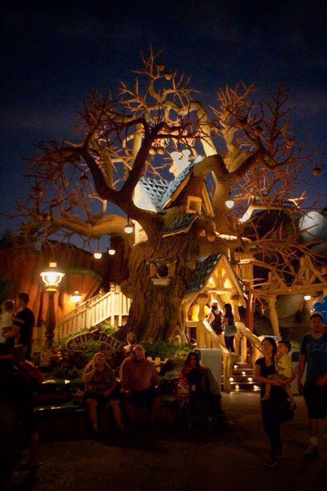 Disneyland Annaheim
