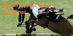 International Olympic Committee: ban all Olympic horse disciplinesCare2 : The Petition Site : My PetitionSite