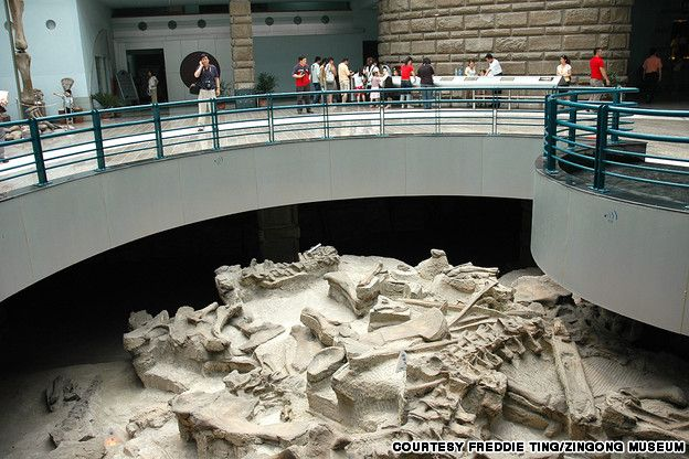World's best dino museums