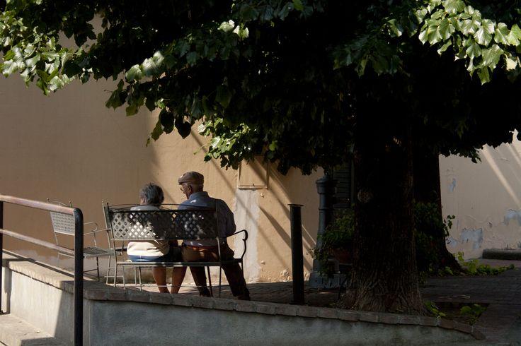 Castagneto Carducci (Livorno), Italy - 2013