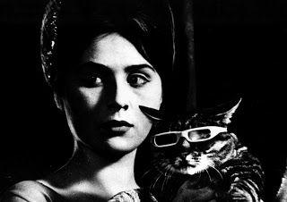 Um Dia, Um Gato é uma obra prima que deve ser vista por quem gosta de cinema de qualidade. É um filme que ganhou com merecimentos o Prêmio Especial do Júri no Festival de Cannes de 1963.