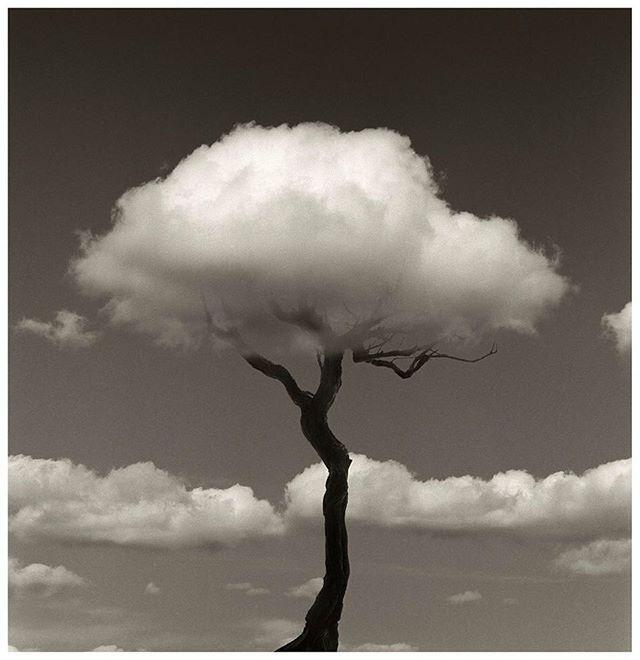 Reto 12. Objeto ordinario que con otra perspectiva se convierte en un objeto extraordinario. Fotografía de Chema Madoz. #CosasDePubli #RetoVisual0911 #PU0911