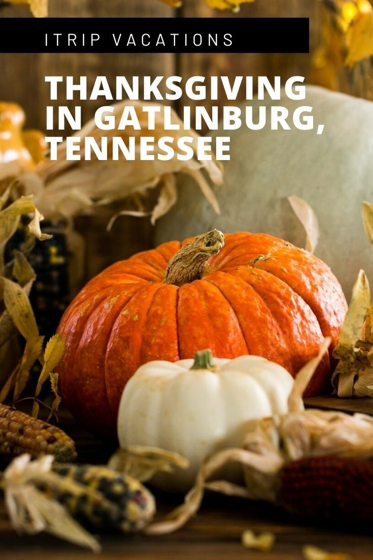 Celebrate A Heart Warming Thanksgiving In Gatlinburg In 2020 Thanksgiving Centerpieces Diy Thanksgiving Centerpieces Gatlinburg