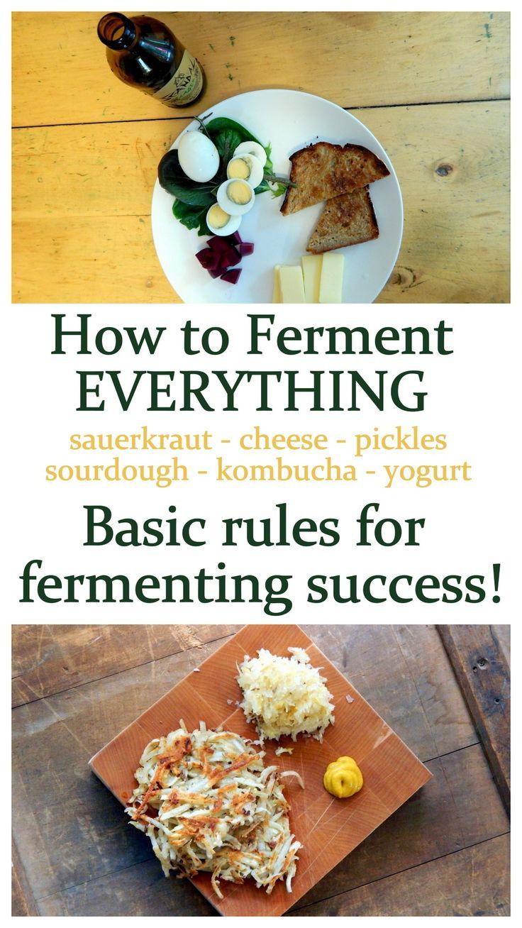 How to ferment basic rules for fermentation