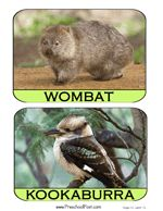 Australian Animal Matching Game