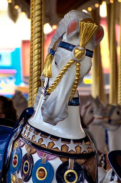 Cinderella's Golden Carousel,  PTC Outside Row Jumper, © Jean Bennett