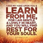 Daily Devotions:   Matt 11: 29 Take myyoke upon you and learn from ...