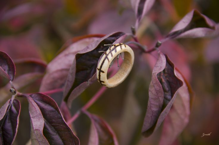 This ring tells the story of inner and outer strength of one of my best friends. He successfully combines strength with different abilities such as attunement or intuition in his personal life chal...