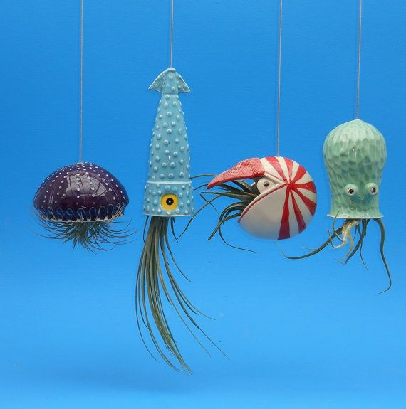Octopus Garden of 4 Large Planters for Air Plants