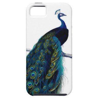 Vintage Blue Elegant Colorful Peacock iPhone 5 Cases