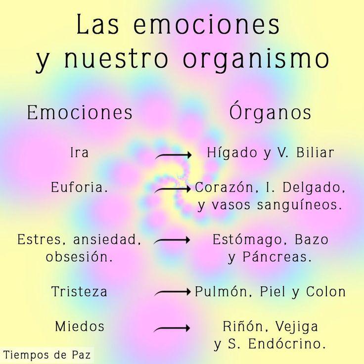 emociones y salud - MEDICO HOMEOPATA IRIOLOGO, ACUPUNTURA, FLORES de BACH, PSICOTERAPIA DINAMICA - Calle SIMON BOLIVAR 397- CORDOBA -Capital- Argentina -Tel. (0351) 421 0847