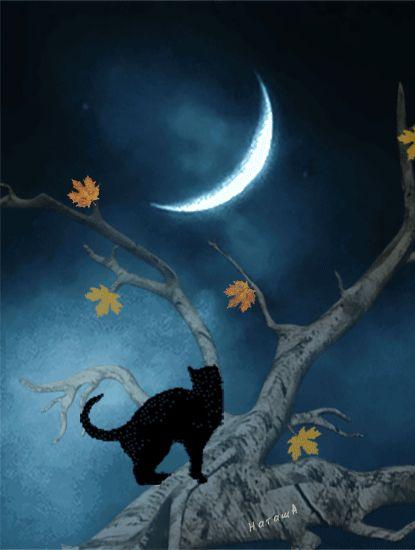 ve bazen unutmak için uyumak gerek,rüyaları hesaba katmadan... _____________ Iyi geceler dilerim.