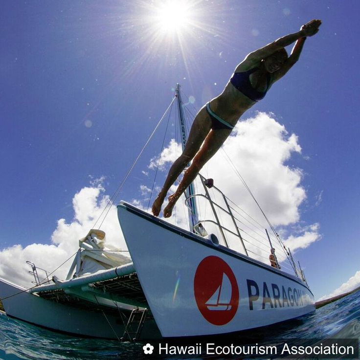 Certified Tour Operator @bodyglovehawaii does a phenomenal job reiterating reef safe sunscreen and promoting protection of coral. Dive into one of their tours now!  #eco  #ecotourism  #greentravel  #green  #tourism  #tours  #sustainable  #sustainabletravel  #sustainability  #travel  #hawaii  #travelpono  #dive  #ocean  #coralreef  #reefsafe  #nature