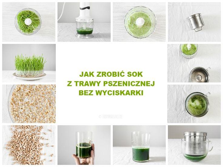 Prosty przewodnik, o tym, jak zrobić sok z trawy pszenicznej bez wyciskarki i sokowirówki.