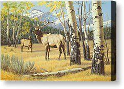 Distant Bugle Canvas Print by Paul Krapf