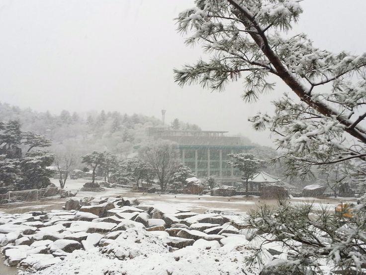 2015年1月1日、年始から全国的に雪が降ったようですね。 新春から初雪。なんだか今年は、いいことがありそうです♪ 鄭明析先生の故郷である月明洞も、この季節は、雪で真っ白に覆われています。 綺麗ですね☆*:.。. o(≧ … Continue reading