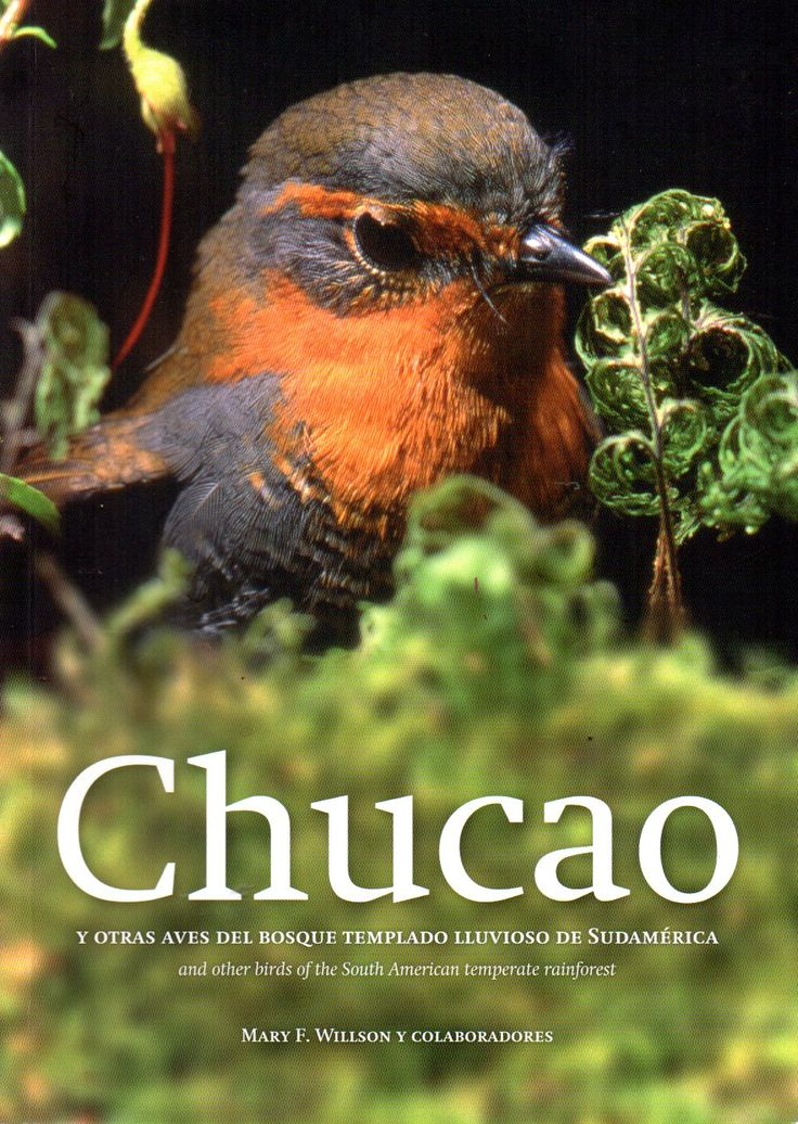 Chucao y otras aves del bosque templado lluvioso de Sudamérica. Mary F. Willson