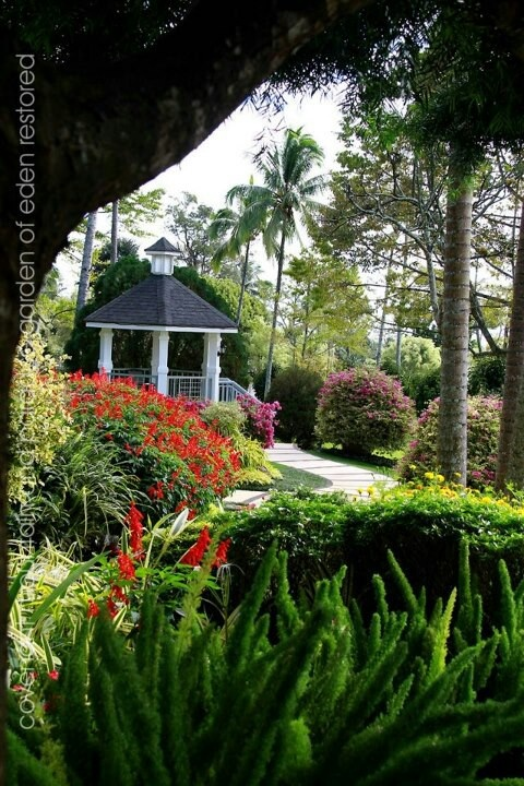 Garden By The Bay Davao City 144 best beautiful city of davao images on pinterest | davao