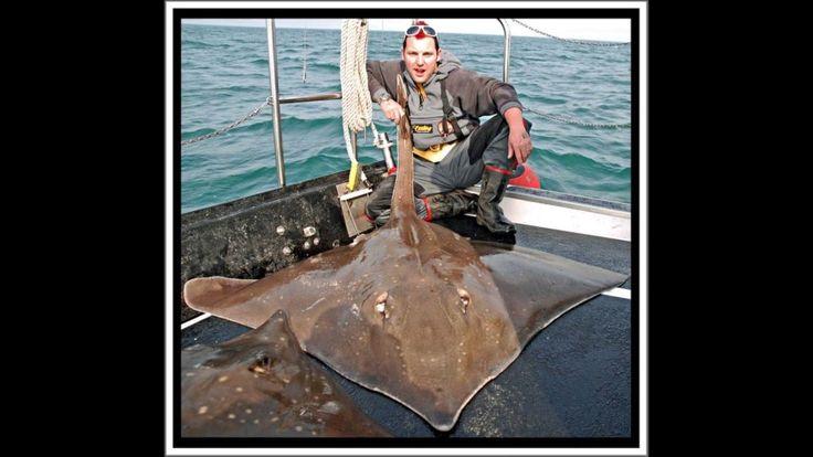 Carrick Specimen Hunters Skate Fishing 2011 pt2.