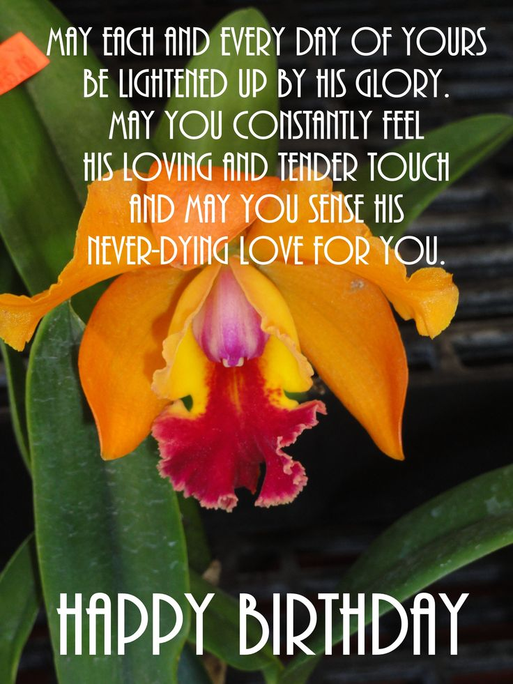 Birthday wishes - orchid - picture taken in Hawaii