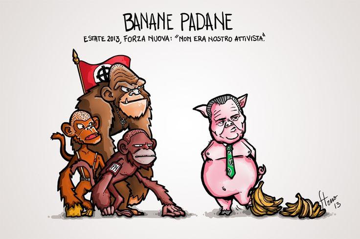 #VIGNETTA: #Kyenge e le Banane Padane