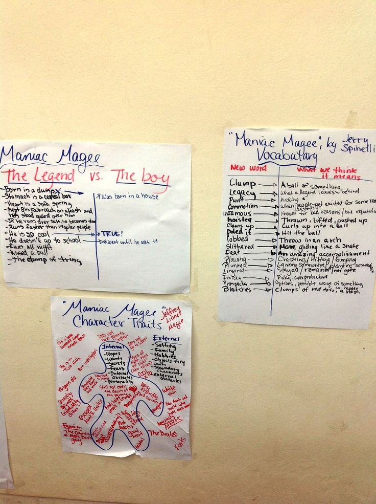 best maniac magee ideas novel definition it  6th grade reading charts maniac magee