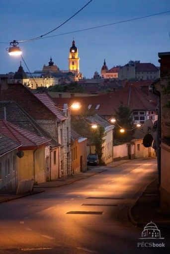 Ady Endre utca (3. pécsi albim utcája)