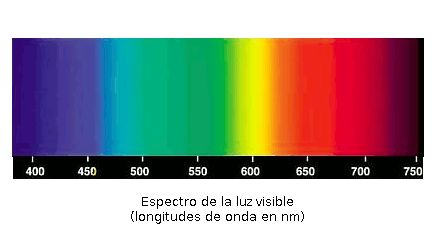 La luz visible corresponde a una pequeña parte del espectro electromagnético