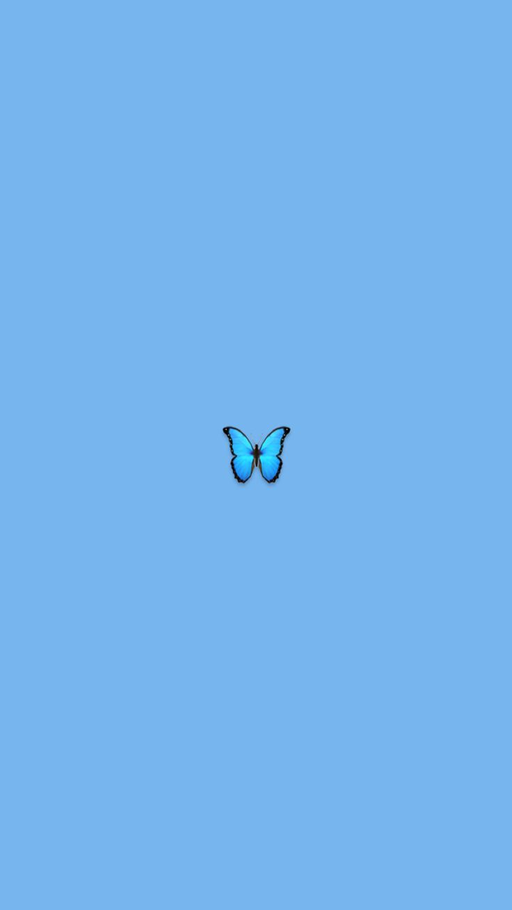 Blue butterfly iphone wallpaper aesthetic cute minimalist ...