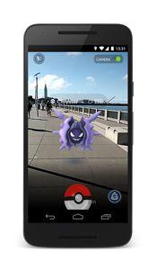 Pokémon GO Encounter Screenshot