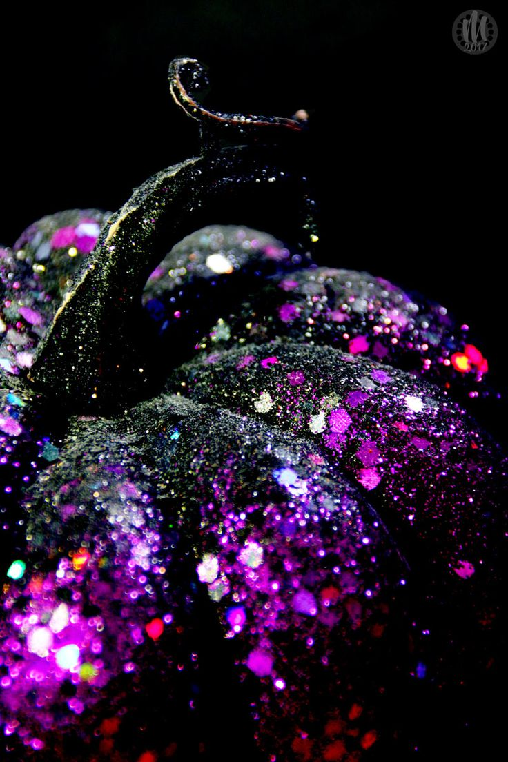 Less Bitter, More Glitter / Project 365 : 2017 – Day 292