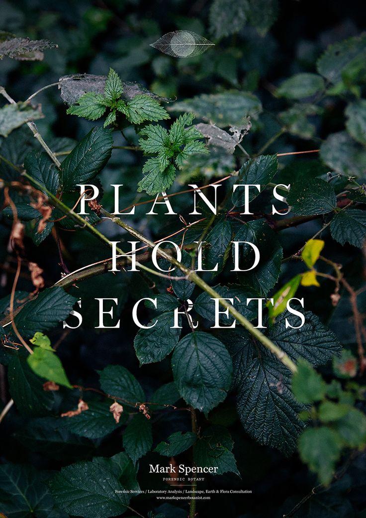 Identity for Mark Spencer, Forensic Botanist Creative