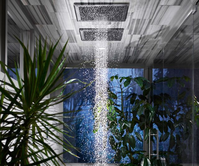Kohler Real Rain Shower Head With Images Rain Shower Head