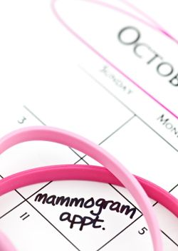 Google Image Result for http://www.breastcancerinformationhelp.com/images/when_to_have_mammogram.jpg